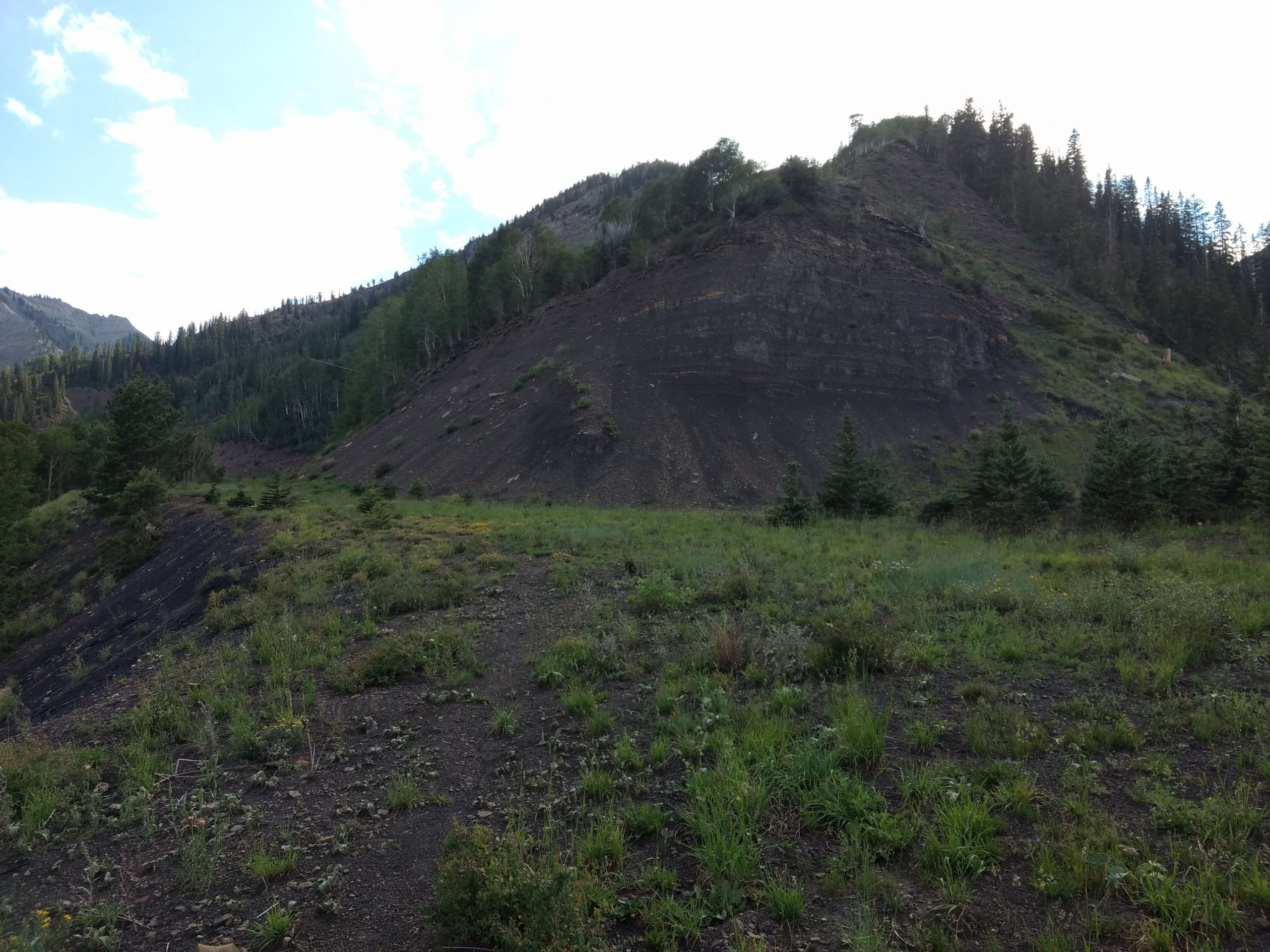 Coal Mine Methane Emissions